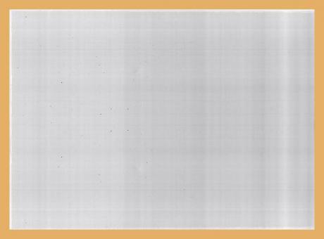 Schutzhüllen für Belege im DIN-A4-Format aus Hartfolie (10 Stück)