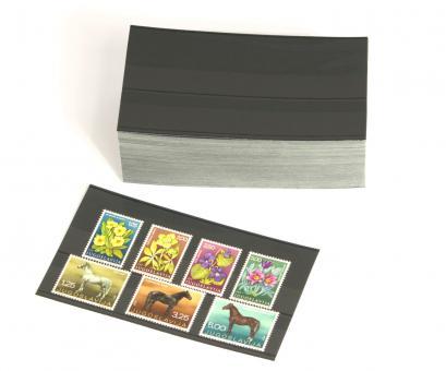 Bonus: 100 Versand-Einsteckkarten 147 x 84 mm mit 2 Streifen und Deckblatt (Sonderposten leicht gebogen) kostenlos